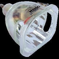 CTX EzPro 702 Lampada senza supporto