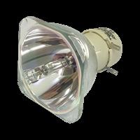DELL 725-BBDM Lampada senza supporto