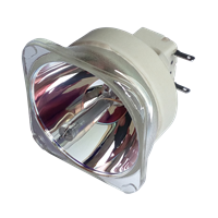 PHILIPS-UHP 330/270W 1.0 E20.9 Lampada senza supporto