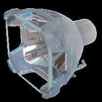 UTAX DXL 5030 Lampada senza supporto